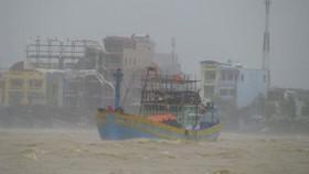 Các tỉnh, thành phố ven biển từ Thanh Hóa đến Khánh Hòa chủ động ứng phó bão số 13