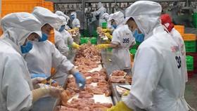 Hoạt động sản xuất kinh doanh tại TPHCM duy trì tốc độ tăng trưởng khá