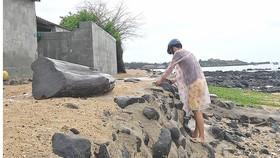 Gần 100 hộ dân huyện đảo Phú Quý nguy cơ bị biển xâm thực