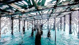Triển lãm nghệ thuật đại dương độc đáo tại Maldives