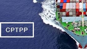 Hiệp định CPTPP: Sẽ xóa bỏ 86% dòng thuế nhập khẩu vào Nhật Bản