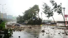 Chiều tối ngày 2-8, bão số 3 giật cấp 12 đi vào vùng biển Quảng Ninh - Hải Phòng
