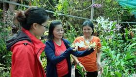 Chị Kiều Thơ (đứng giữa) hướng dẫn hội viên chăm sóc hoa lan