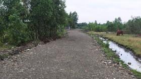 Đề nghị điều tra vụ chuyển hơn 7.000m² đất công thành đất tư