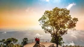 Chính thức vận hành hệ thống cáp treo mới tại Khu du lịch Quốc gia Núi Bà Đen