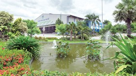 Đồng hành cùng TPHCM góp phần làm trong sạch môi trường