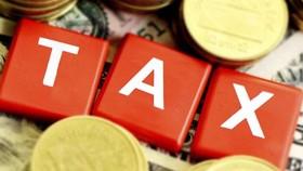Nhiều cơ chế an toàn trong quyết toán thuế mùa dịch