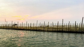 Thành lập khu bảo vệ nguồn lợi thủy sản An Xuân