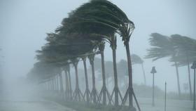 Bão số 2 di chuyển theo hướng Tây Tây Bắc, sức gió mạnh cấp 8, giật cấp 10