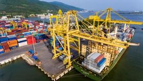 Sản lượng hàng hóa thông qua cảng biển tăng 6%