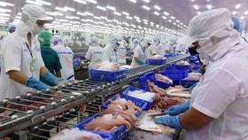 Giá nhiều mặt hàng thủy sản giảm