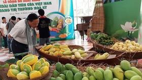 Giám sát quản lý mã vùng trồng và cơ sở đóng gói trái cây xuất khẩu