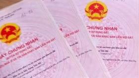 Bà Rịa - Vũng Tàu: Phát hiện nhiều giấy chứng nhận quyền sử dụng đất giả