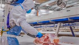 Dây chuyền chế biến thịt mát của Masan MEATLife