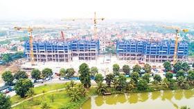 Hòa Bình thi công vượt tiến độ dự án Sky Oasis Residences