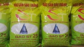 """Tìm """"đáp án đẹp"""" cho gạo thơm Việt Nam"""