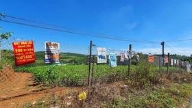 Phân lô, xây dựng trên đất nông nghiệp tại Lâm Đồng. Ảnh: ĐOÀN KIÊN