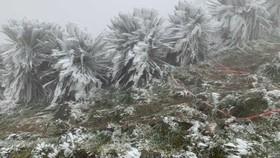 Nhiệt độ tại đỉnh Mẫu Sơn 3°C