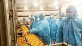 Đoàn công tác Bộ NN-PTNN thăm trại gà Ba Huân  tại huyện Bến Lức (Long An)