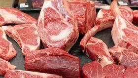 Hướng tới tăng sản lượng thịt bò trong nước