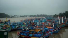 Hỗ trợ tàu thuyền tránh bão Dujuan