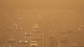 Hàn Quốc chịu ảnh hưởng nặng từ bão cát Trung Quốc