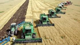 Cho đến nay mới chỉ có 8,5% diện tích đất nông nghiệp của EU được canh tác hữu cơ. Ảnh minh họa, nguồn: REUTERS