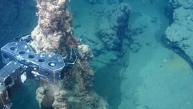 Hưởng ứng ngừng khai thác dưới đáy biển