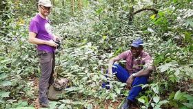 Tiến sĩ A.Davis (trái) và đồng nghiệp tái phát hiện cây cà phê Stenophylla trong chuyến thám hiểm ở Sierra Leone