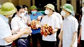 Thương mại điện tử vào cuộc tiêu thụ nông sản