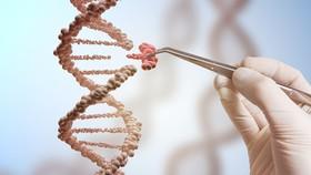 WHO khuyến nghị về chỉnh sửa bộ gen người