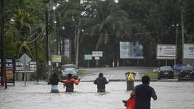 Cảnh ngập lụt sau những trận mưa lớn do ảnh hưởng của bão tại Las Posas, Guatemala