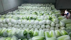 Nông sản tại nhiều tỉnh thành có giá bán thấp do không tìm được đầu ra