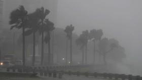 Vùng áp thấp trên biển phía Đông đã mạnh lên thành áp thấp nhiệt đới