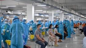 79% F1 ở Bắc Giang chuyển thành F0