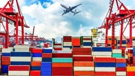 Việt Nam là quốc gia được hưởng lợi lớn khi đứng thứ 6 toàn cầu về nhập khẩu vào Mỹ. Trước đó, năm 2018 Việt Nam còn ở vị trí thứ 12. Ảnh: TL