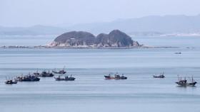 Hàn Quốc tố tàu Trung Quốc đánh bắt cạn kiệt nguồn cá