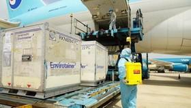 Vaccine là loại hàng đặc biệt cần ưu tiên trong vận chuyển, bảo quản. Ảnh: CHKVN