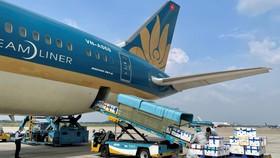 Lần đầu tiên Vietnam Airlines bố trí riêng một siêu máy bay chỉ để chở vải thiều. Ảnh: VNA