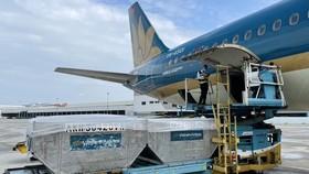 Máy bay chở 800 máy thở và 6,2 tấn thiết bị y tế vào TPHCM