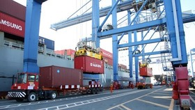 Tổng cục Hải quan cho phép vận chuyển hàng hóa đang lưu giữ tại cảng Cát Lái đến cảng biển khác trên địa bàn TPHCM và các cảng cạn ICD để lưu giữ. Ảnh: TTXVN