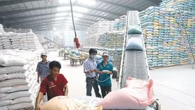 TPHCM và 23 tỉnh thành sẽ được cấp hơn 130.000 tấn gạo hỗ trợ người dân khó khăn vì Covid-19.