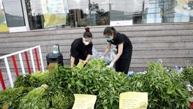 Sẽ có 50.000 combo nông sản rau củ quả về TPHCM trong tuần này. Ảnh: NN