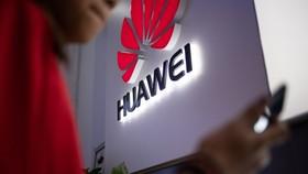 Bị tẩy chay và doanh thu lao dốc, Huawei rút dần khỏi Ấn Độ