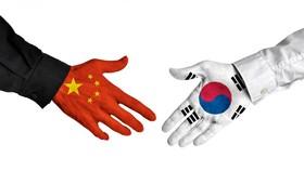 Bất chấp Covid-19, xuất khẩu Hàn Quốc ngày càng phụ thuộc vào Trung Quốc