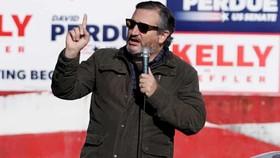 Ted Cruz cùng 10 thượng nghị sĩ quyết phản đối kết quả bầu cử