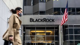 BlackRock has made ambitious commitments to environmental, social and governance issues © Bloomberg