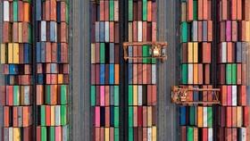 Cảng Yantian tại Thâm Quyến hồi tháng Hai. Đợt bùng phát dịch Covid-19 với chùm ca bệnh liên quan tới công nhân cảng này khiến hoạt động rơi vào đình trệ - Ảnh: Getty Images