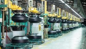 Inside a Da Nang Rubber Co (DRC) factory. The company has announced Q2 revenue up 52 per cent to VND1.2 trillion (US$52.2 million). — Photo courtesy of DRC
