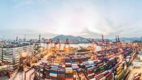 Cảng container Kwai Chung ở Hồng Kông: tình trạng tồn đọng ở miền nam Trung Quốc hiện là tệ nhất thế giới © Marc Fernandes / NurPhoto qua Reuters